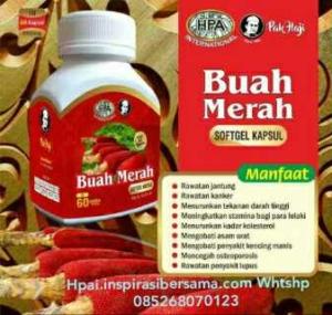 Produk Herbal hpa Buah Merah